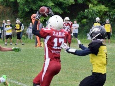 Stefan Zarić